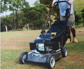 Bushranger Mower 1
